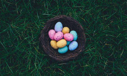 Caccia alle uova Rovereto